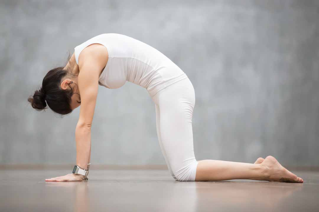 hatha yoga bordeaux postures douleur mal de dos